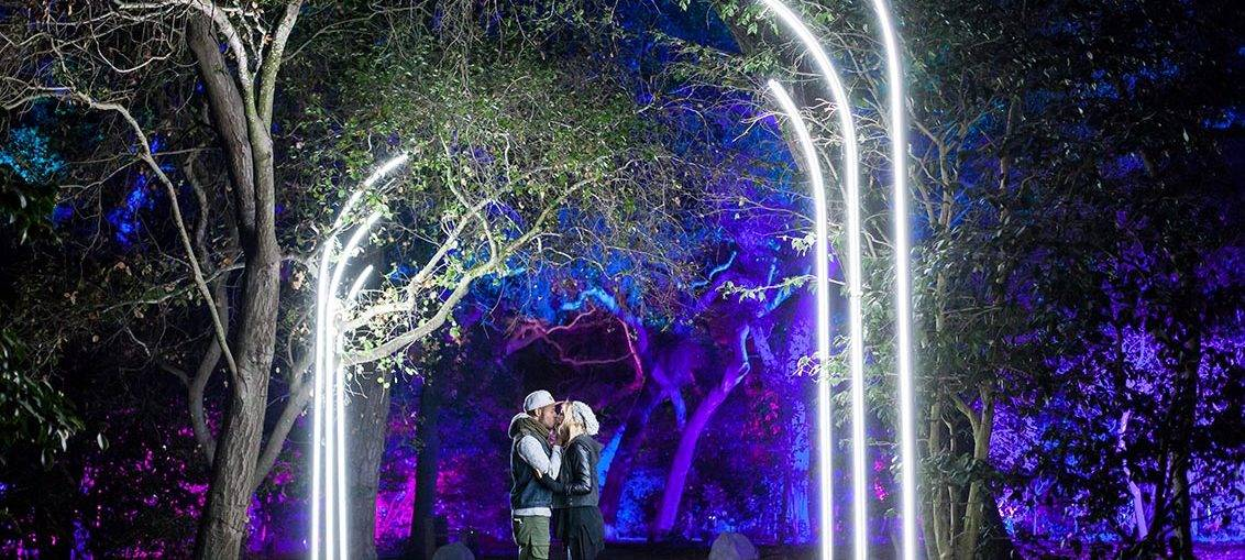 Usa descanso gardens enchanted forest of light makes - Descanso gardens enchanted forest of light ...